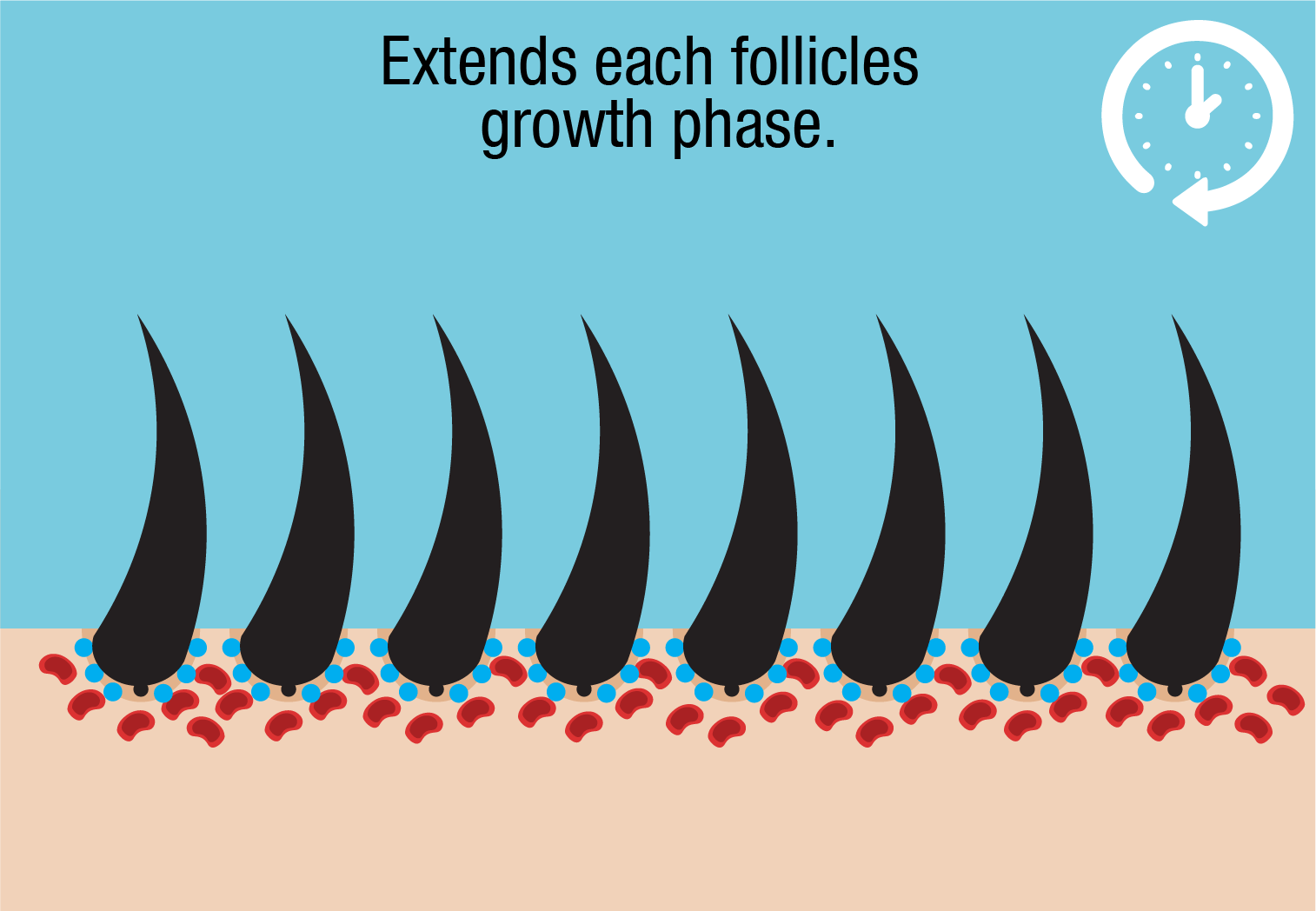 growth phase extended