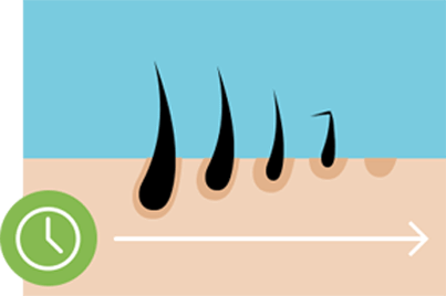 Scalp with an average amount of hair showing the causes of hair loss.